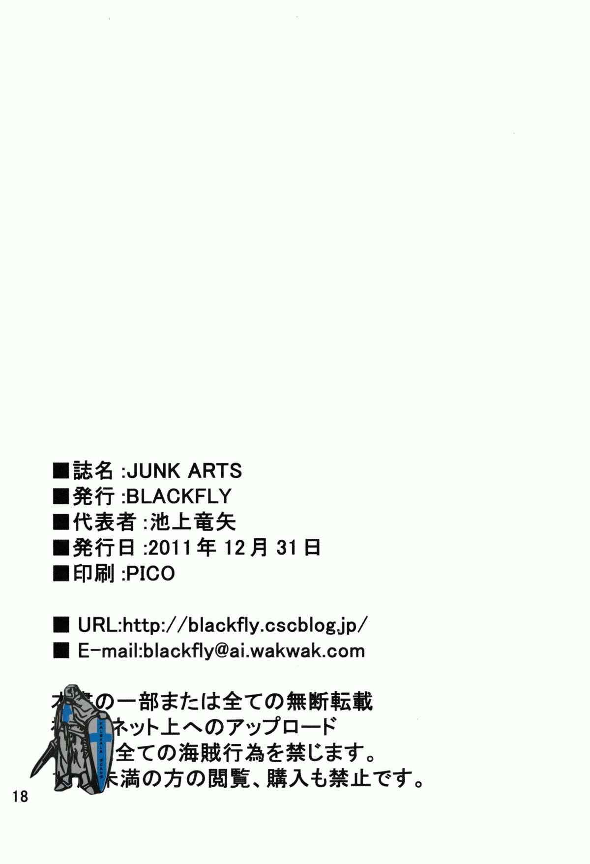 JUNK ARTS 17