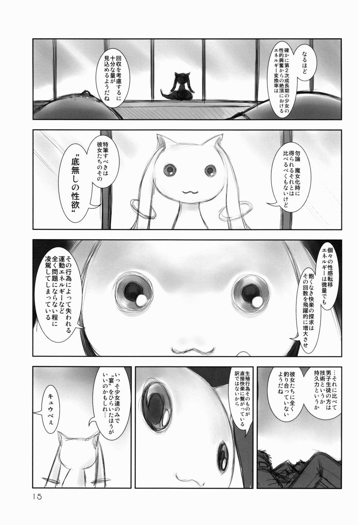 Mahou Shoujo Sei☆Utage 13