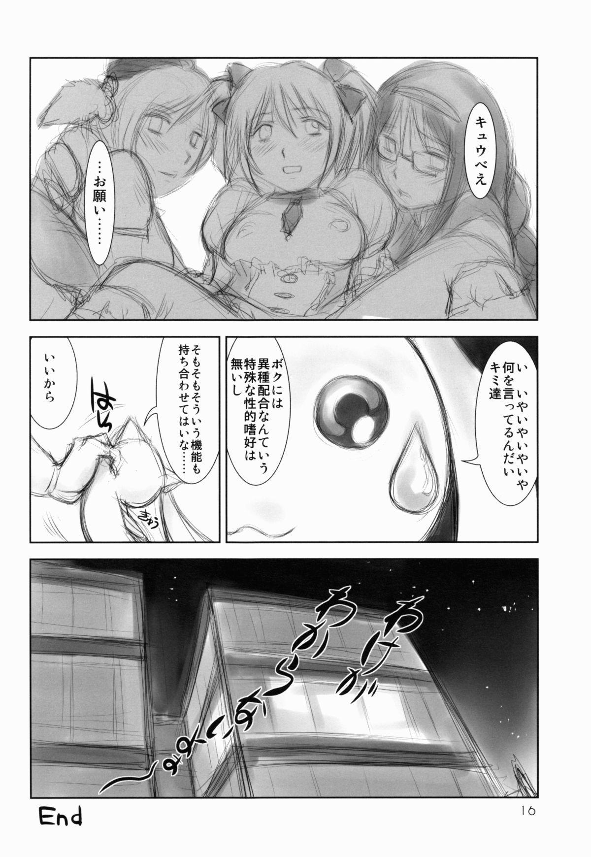 Mahou Shoujo Sei☆Utage 14