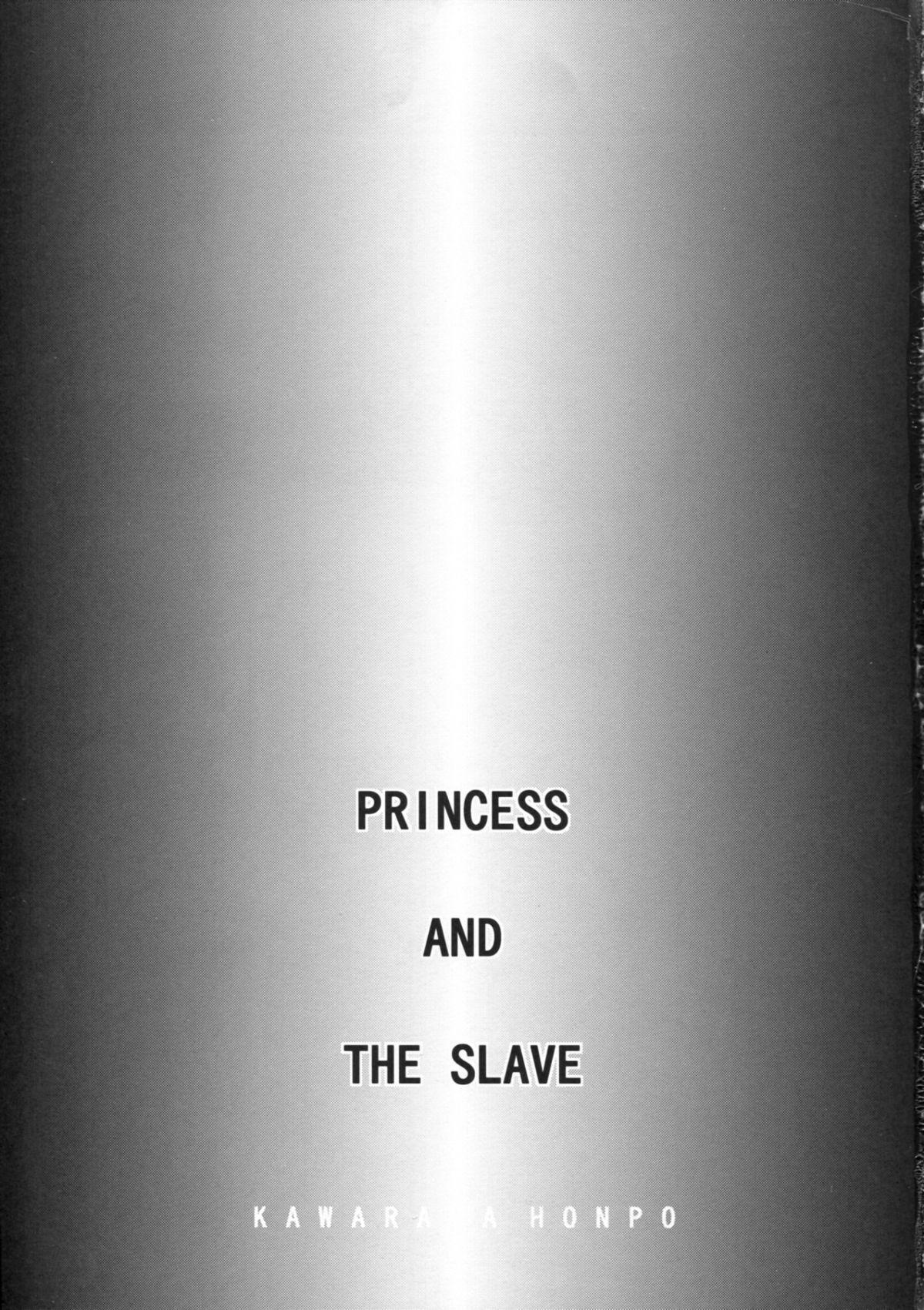 PRINCESS AND THE SLAVE 1