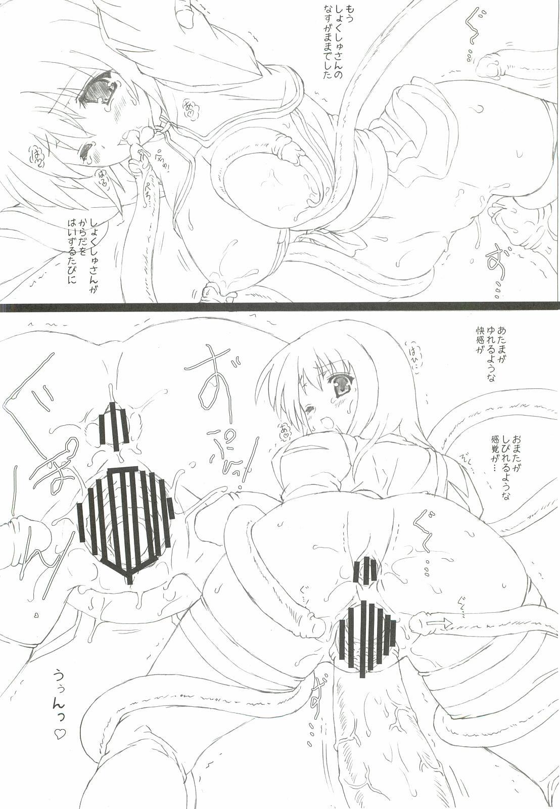 (C81) [Testa Kitchen (Testa)] Akubi-san to Shokushu-san (Ragnarok Online) 12