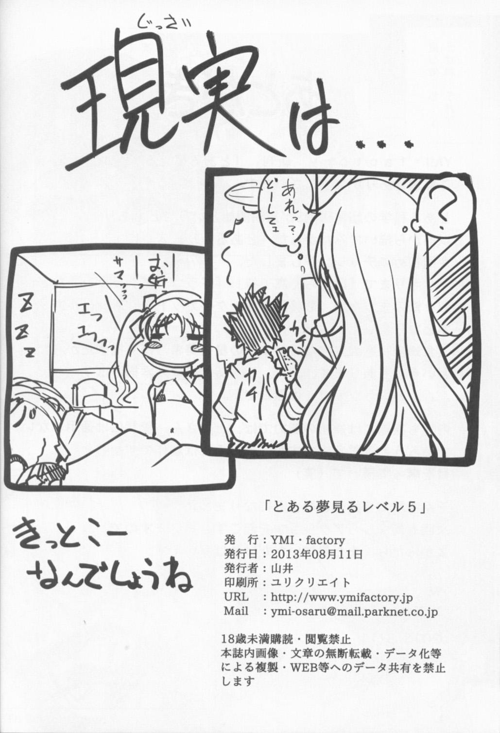 Toaru Yumemiru Level 5 20